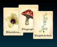 Kräuterkarten
